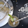 Gin Fizzy