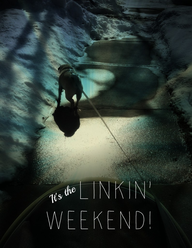 LINKIN' WEEKEND | Sarcastic Cooking