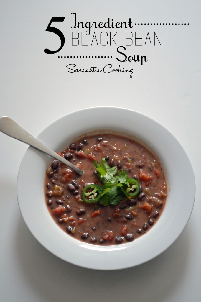 5 Ingredient Back Bean Soup - Sarcastic Cooking
