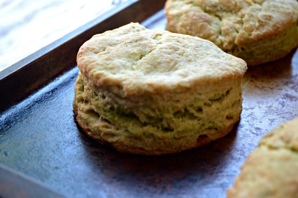 Arugula Pesto Biscuits  | Sarcastic Cooking