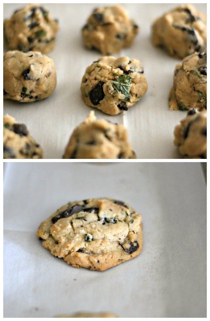 Fresh Mint and Dark Chocolate Cookies