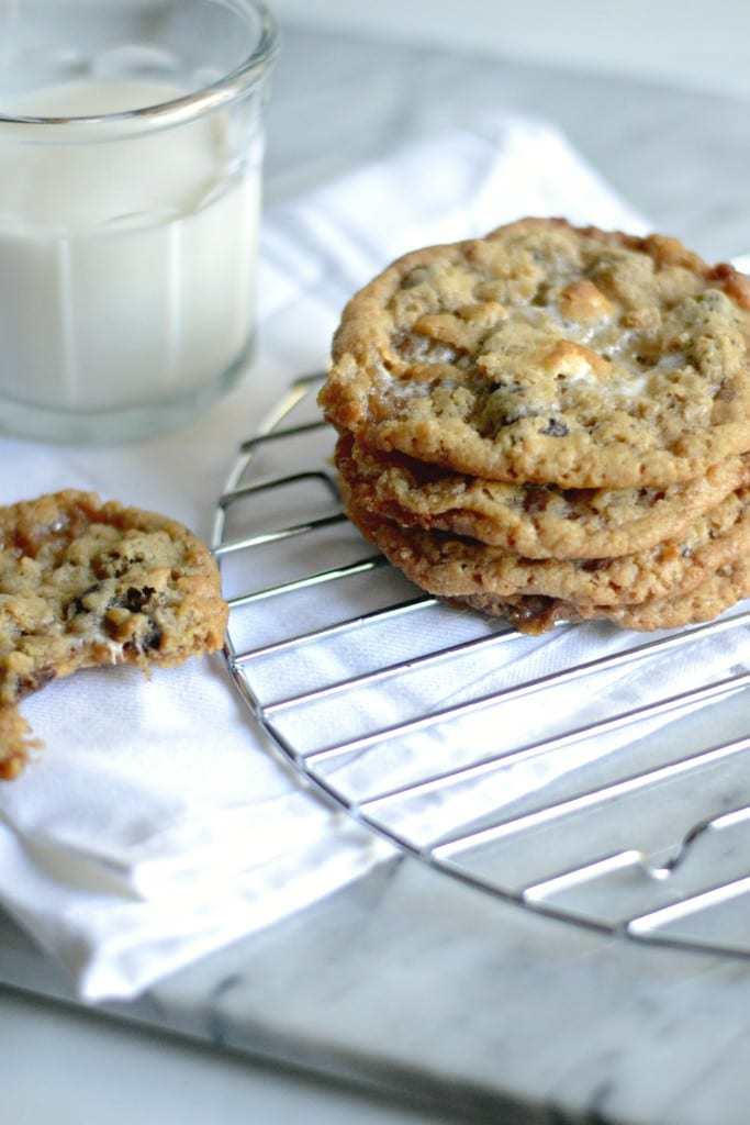 Chocolate Chip Rice Krispy Treat Cookies   Sarcastic Cooking