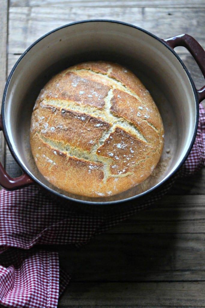 No Knead Pumpkin Beer Bread | Sarcastic Cooking