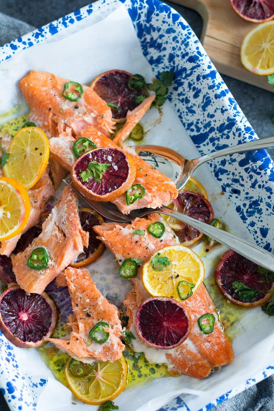Blood Orange Jalapeño Baked Salmon   Sarcastic Cooking